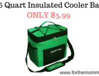 16 Quart Insulated Cooler Bag