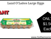 Land O'Lakes Large Eggs