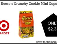 Target: Reese's Crunchy Cookie Mini Cups $2.33 {Reg $3.99}