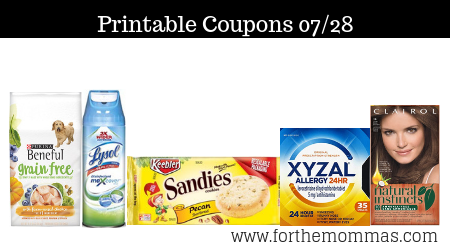 graphic about Ben and Jerry's Printable Coupons named Printable Coupon codes Roundup 07/28: Preserve Upon Ben Jerrys