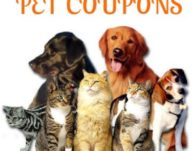 Save on Cat Chow, Sheba, Fancy Feast and More